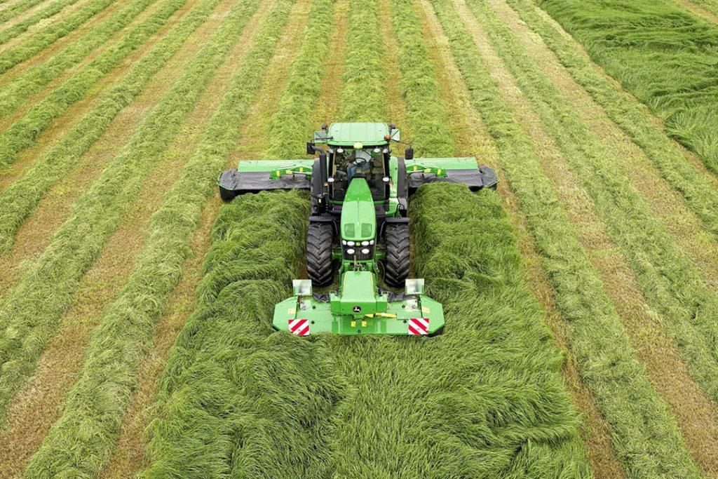 De optimale maaihoogte van gras is 7 cm. De voederwaarde van gras zit namelijk in het blad en niet in de stam/stengel. - Foto: DSV Zaden