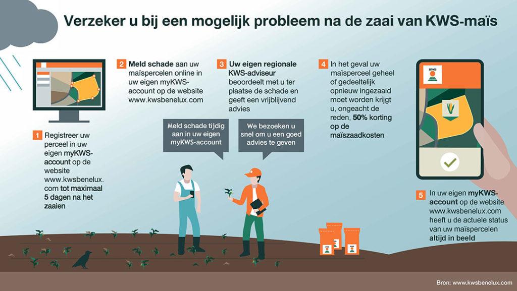 Door maïspercelen te registeren wordt, na geconstateerde schade in wat voor vorm dan ook, 50% van de maïszaadkosten vergoed. - Afbeelding: KWS