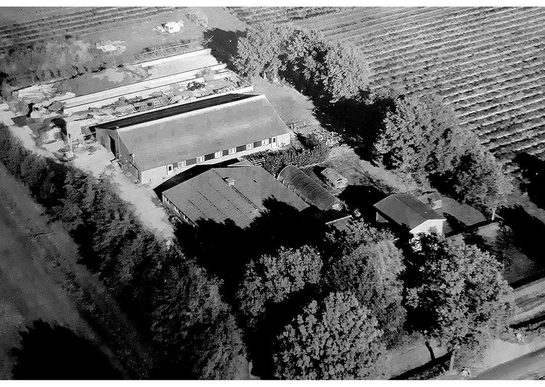 Een eigen boerderij, het was een droom die uitkwam. Helaas bleek geen van de kinderen interesse te hebben het bedrijf over te nemen.