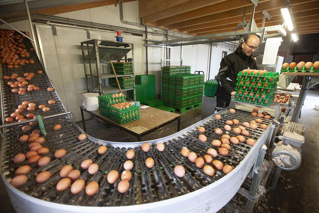 Beeld van het eierlokaal. Harry en Suzanne Migchels leveren witte biologische eieren en bruine scharreleieren.
