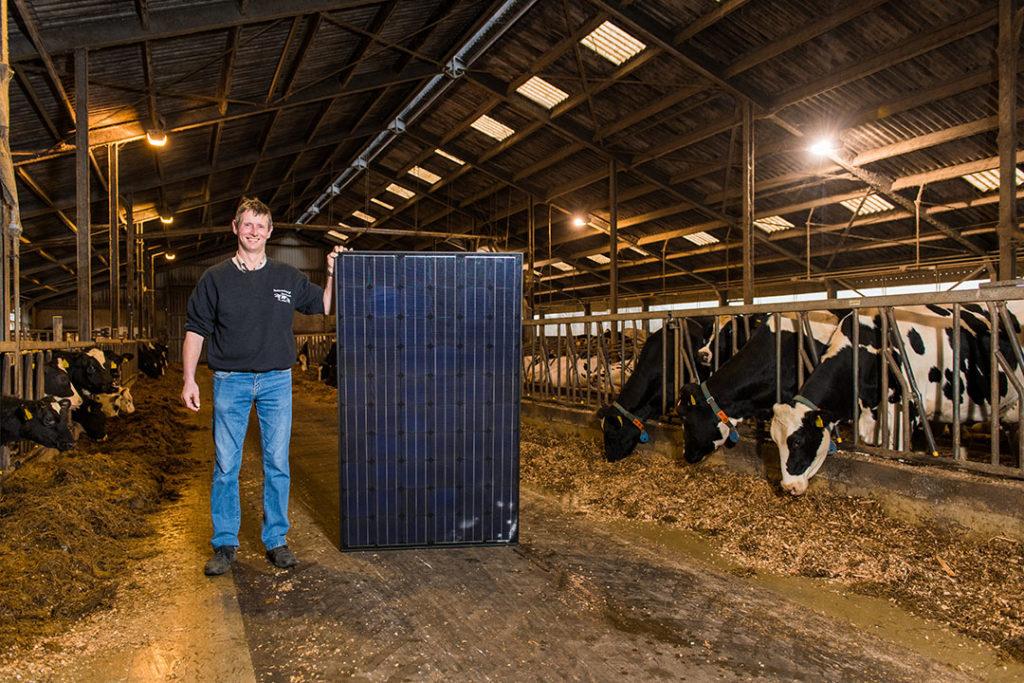 """Marc Gerritsen wilde graag zonnepanelen op het dak van zijn melkveebedrijf in Chaam. Met een gemiddeld jaarverbruik van 42.000 kWh was het energieverbruik van het bedrijf flink. """"Elke keer dat ik de maandelijkse energierekening tegen het licht hield, dacht ik: dat moet ook anders kunnen."""" Zelfstroom bood de oplossing. - Foto: Christ Clijsen"""