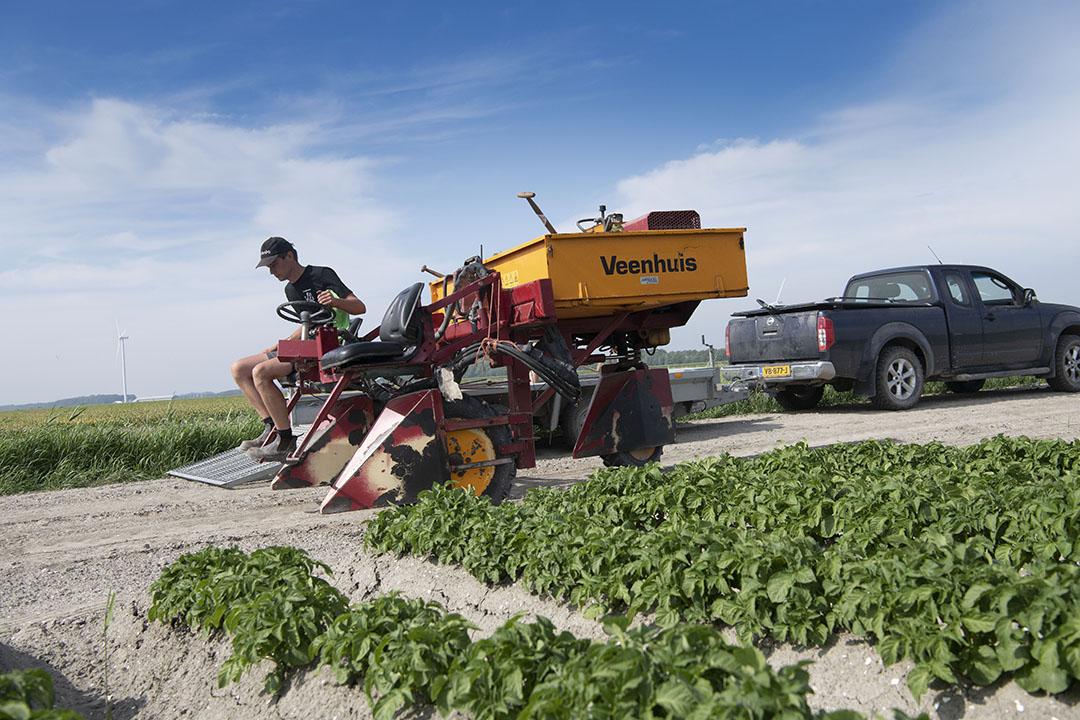 De algemene virusdruk in de aardappelen is de laatste jaren gestegen en het middelenpakket wordt steeds kleiner. Dat maakt bestrijden lastig, aldus Jan.