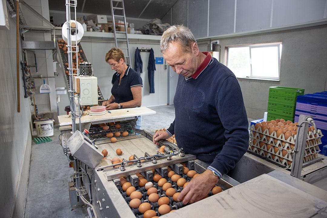 André en Carla aan het werk in het eierlokaal.
