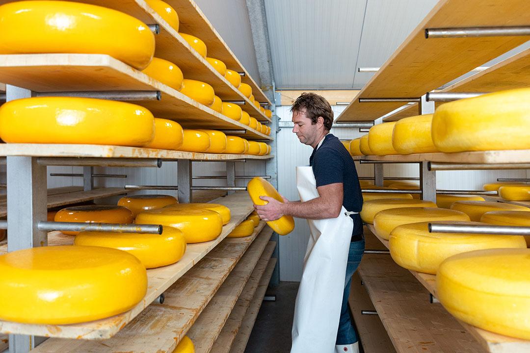 Bij de boerderij hoort ook een kaasmakerij. Van de melk verwerkt Gertjan 95 procent tot boerenkaas.