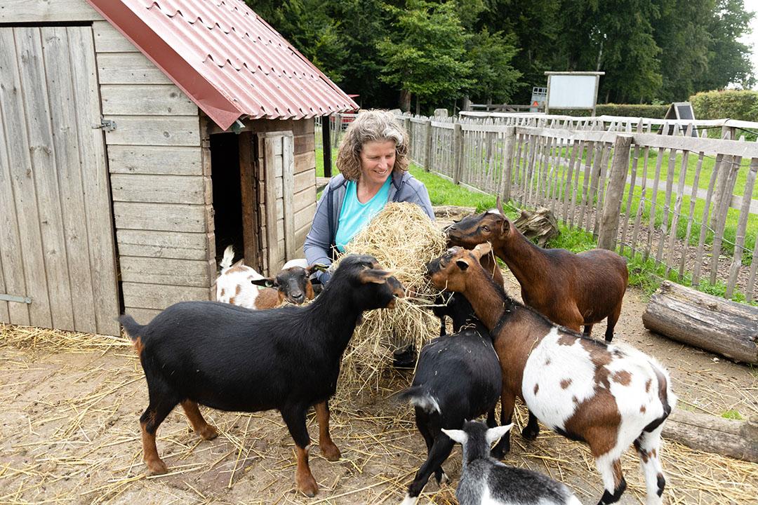 Miranda is de drijvende kracht achter de nevenactiviteiten op het bedrijf, daarvoor kwam er ook wat kleinvee zoals kippen en geiten.