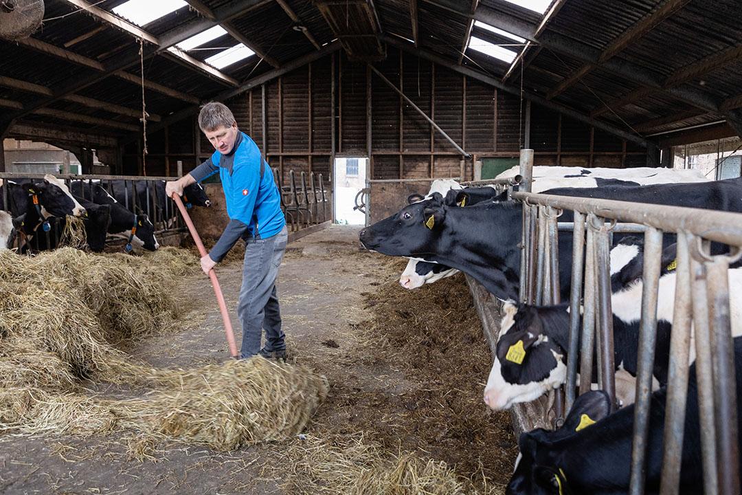 De taakverdeling is niet heel strak, maar in het algemeen doet Ko de koeien en het landwerk.